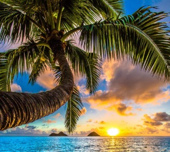 Pacotes Hawaii Decolar;
