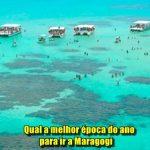 Qual a melhor época do ano para ir a Maragogi?