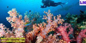 Quanto custa um mergulho com cilindro em Maragogi